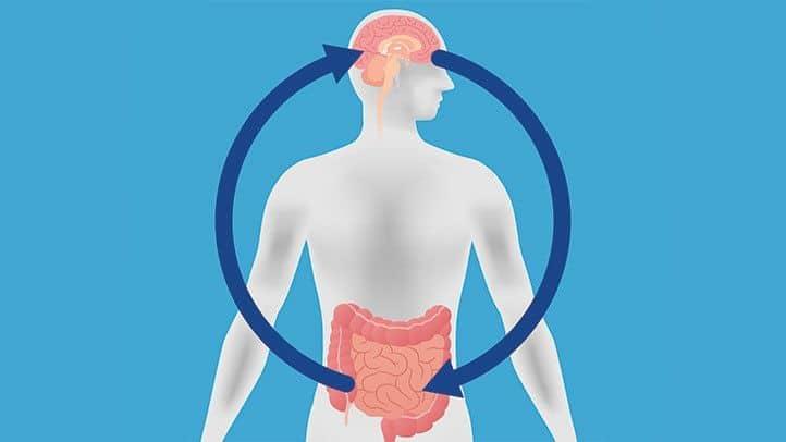 Når det gjelder kroniske magesmerter, kan forbindelsen mellom kropp og kropp være en ond sirkel.
